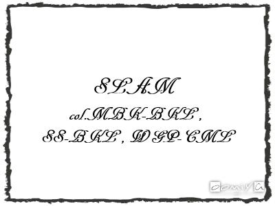 CHROME HEARTS (クロムハーツ)|SLAM サングラス