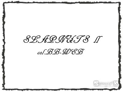 CHROME HEARTS (クロムハーツ)|SLAPNUTS Ⅱ メタルフレーム