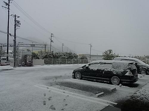 TALEX(タレックス)偏光レンズ 雪の日偏