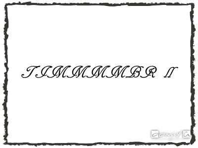 TIMMMMBR Ⅱ