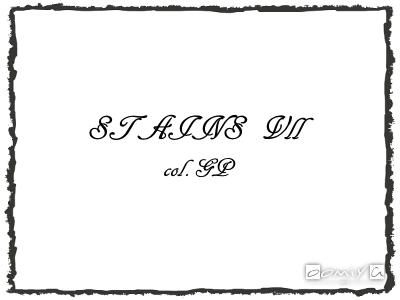 CHROME HEARTS (クロムハーツ)|STAINS Ⅶ col.GP サングラス