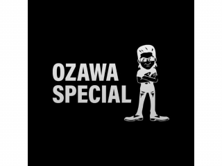 OZAWA SPECIAL OZ-02,OZ-202 col.3312 サングラス|oomiya